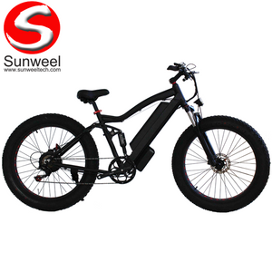 Full Suspension Beach Cruiser Electric Bike