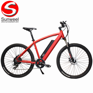 Adult Lithium Mountain Electric Bicycle