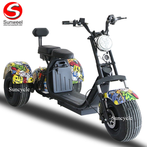 Double Removable Batteries 3 Wheel Electric Tricycle