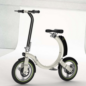 New Style 14inch Folding Electric Bike Mini Foldable Ebike 250W